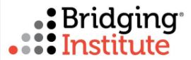 The Bridging Institute logo
